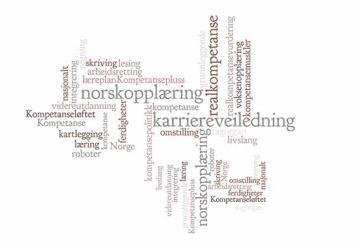 ccfb501a Om Kompetanse Norge - Kompetanse Norge